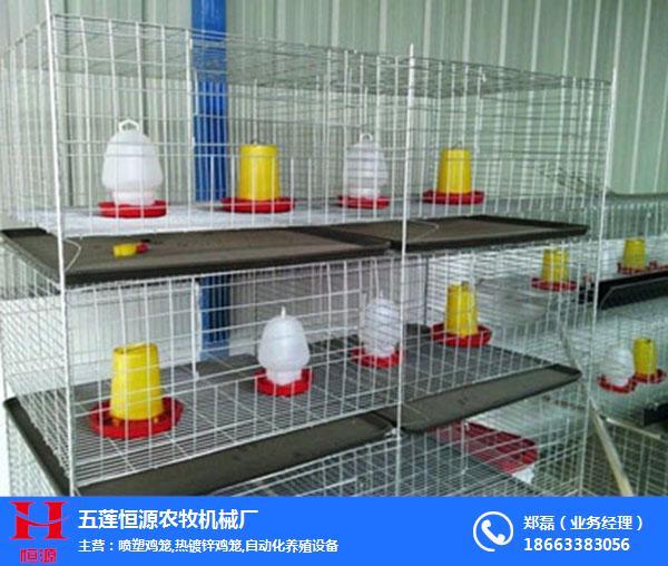 噴塑雞籠加工廠、噴塑雞籠、恒源農牧機械