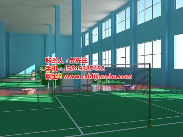 河南PVC運動地坪 PVC運動地坪安裝 彩迪建筑 **商家