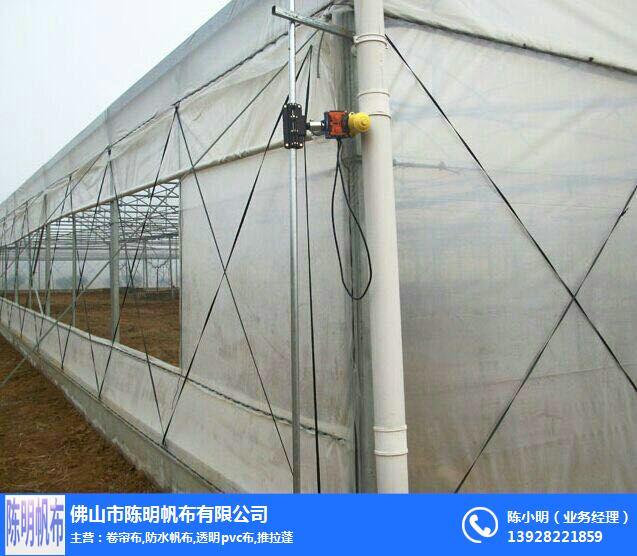 养殖场卷帘布、陈明帆布、加厚防老化养殖场卷帘布