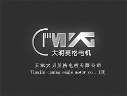 天津大明英格电机有限公司