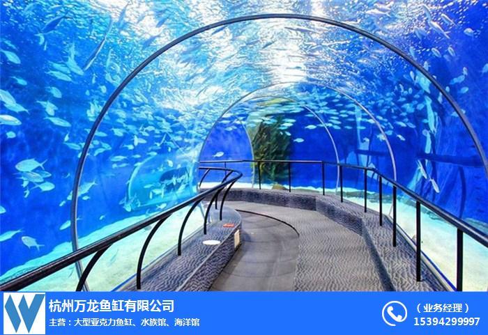 湖南海洋馆设计**咨询「在线咨询」