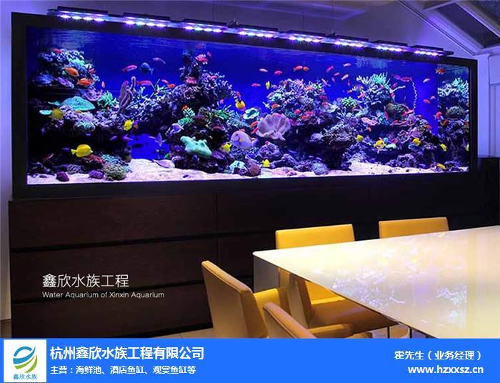 德清观赏鱼缸厂诚信企业「在线咨询」