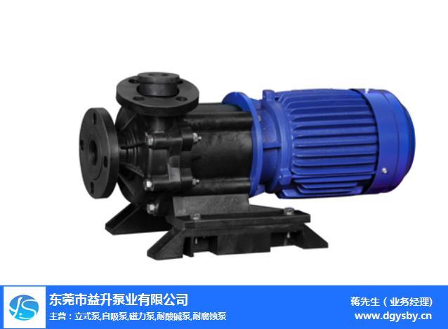 微型磁力泵工廠-揭陽磁力泵-益升泵業,高溫磁力泵(查看)