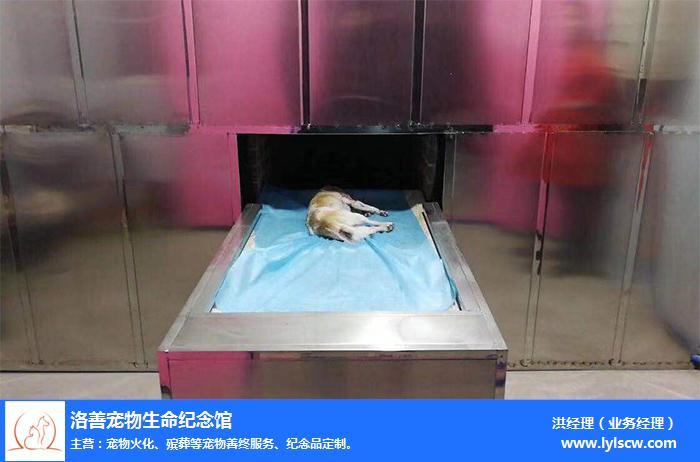 漯河宠物墓地-洛善宠物善后服务-宠物墓地收费