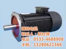 聊城力矩電機生產商、博特電機、力矩電機生產商