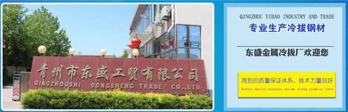 青州市东盛工贸有限公司