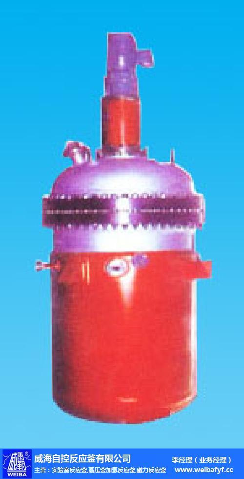氫化釜廠-自控反應釜廠家定制-微型氫化釜廠