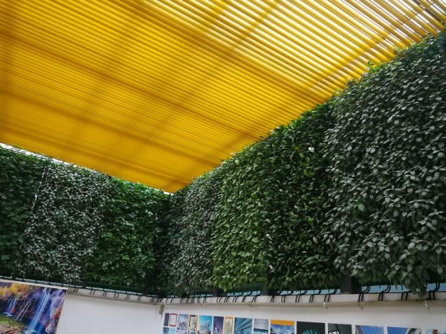 邵陽立體綠化植物墻-中蘭林立體-立體綠化植物墻生產廠商