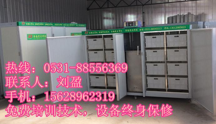 豆制品加工设备_豆腐皮机豆制品加工设备_厂家直销