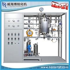 实验系统(图),石油科研仪器装置,装置
