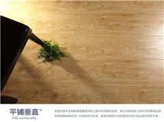 金牌家居(图),品牌强化复合地板经销,强化复合地板