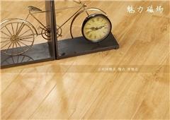 强化复合地板|金牌家居|强化复合地板批发直销