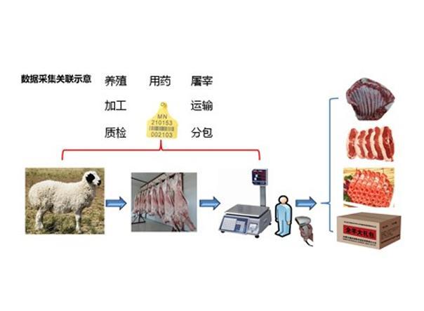 农产品溯源、将为防伪溯源、农产品溯源