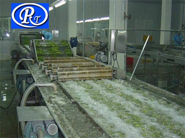 根茎类果蔬清洗机,根茎类果蔬清洗机种类,诸城日通公司