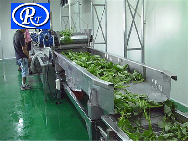 根茎类果蔬清洗机|诸城日通公司|根茎类果蔬清洗机种类