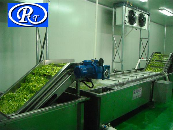 根茎类果蔬清洗机,诸城日通公司,根茎类果蔬清洗机种类