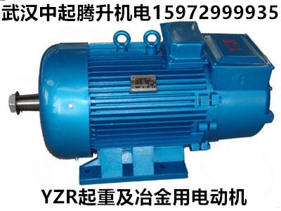定远YZR280M-10  45KW_起重及冶金用电动机