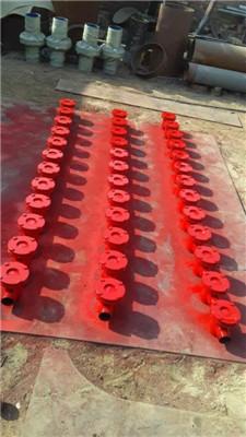 水流指示器图片/水流指示器样板图 (1)