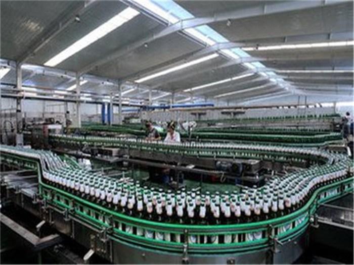 啤酒技术合作|河南啤酒|科润生物