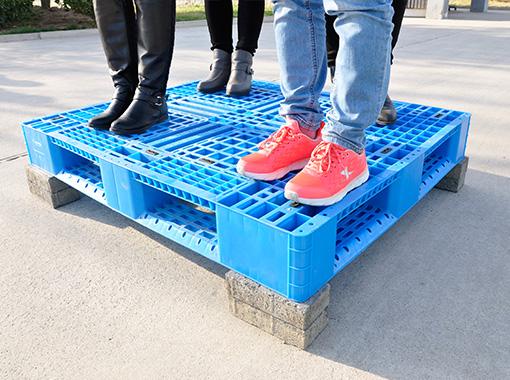 塑胶托盘|天津武清塑料托盘厂家|塑料拍子