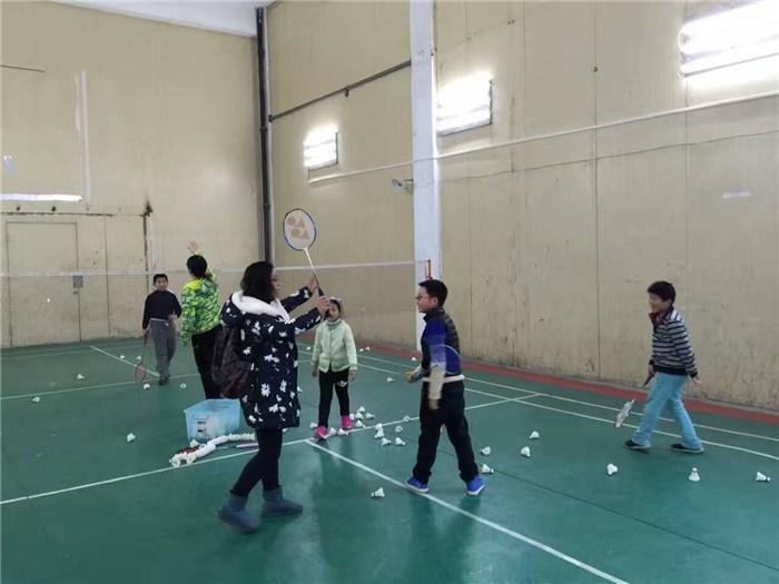 苏州羽毛球培训中心_羽毛球_腾龙体育公司(查看)