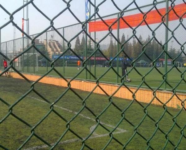 体育运动场围网合作投标 强森体育器材 运动场围网