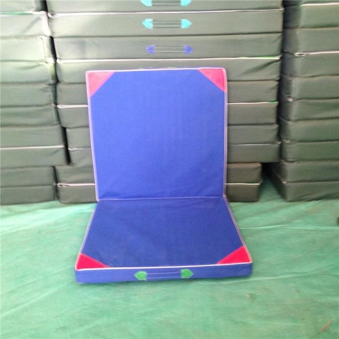 体操垫运动垫子,体操垫,鑫欧泰教学设备(查看)