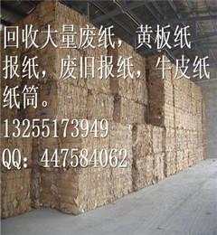 太仓新湖废纸回收_文化用纸废纸回收_工业废纸回收(优质商家)