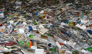 电子厂废纸箱回收、灰板纸废牛皮纸箱回收、太仓南郊纸箱回收