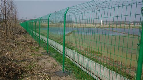 围栏网图片/围栏网样板图 (1)