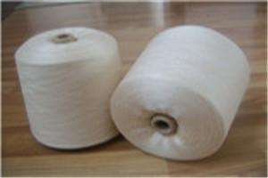 丝光烧毛棉纱图片/丝光烧毛棉纱样板图 (1)