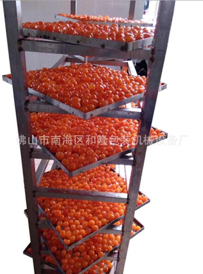 蛋制品烘干机厂家_佛山和隆_武汉蛋制品