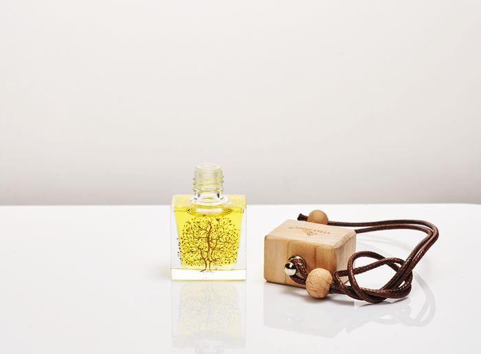 汽车香水挂件吊饰、汽车香水挂件、欧信大品牌供应