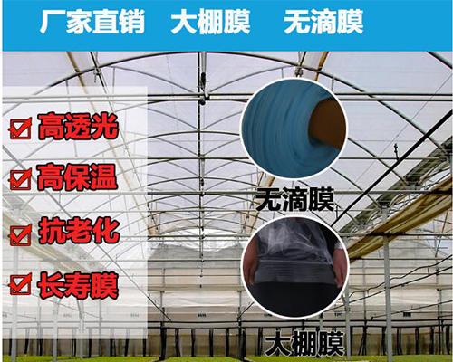 长寿流滴膜图片/长寿流滴膜样板图 (1)