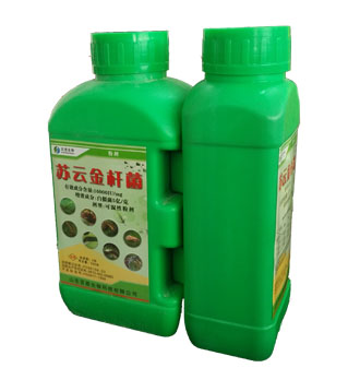 生物肥料|生物|百恩生物