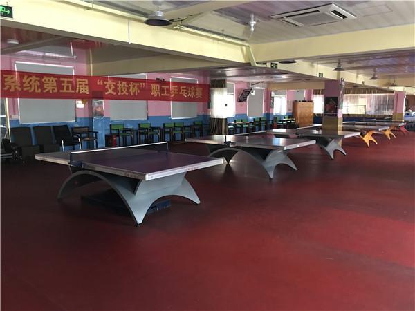 孩子乒乓球暑假班报名,杨文豪体育(在线咨询),乒乓球