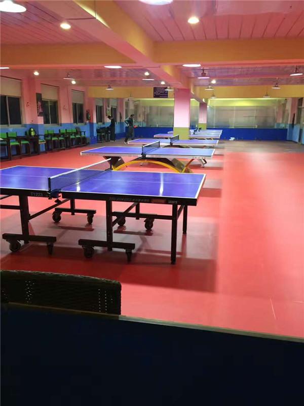 儿童乒乓球暑假班报名_杨文豪体育(在线咨询)_乒乓球