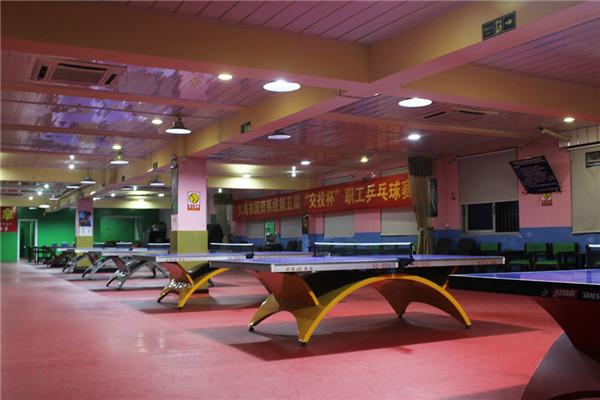 儿童乒乓球假期培训中心|乒乓球|杨文豪体育尊重人才