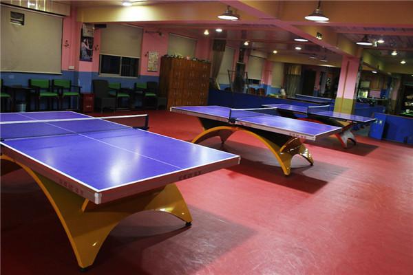 儿童乒乓球假期培训班、杨文豪体育(在线咨询)、乒乓球