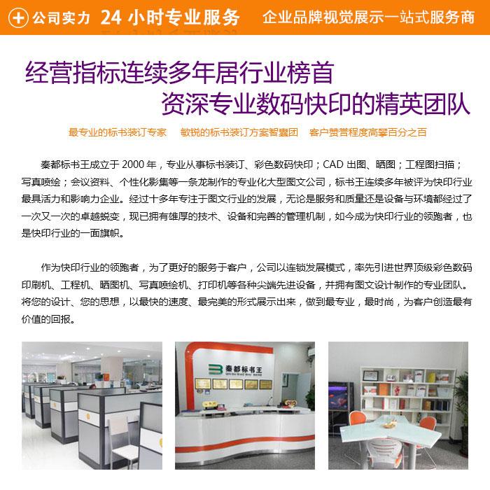 临潼区名片|西安标书王名片印刷|名片设计模板
