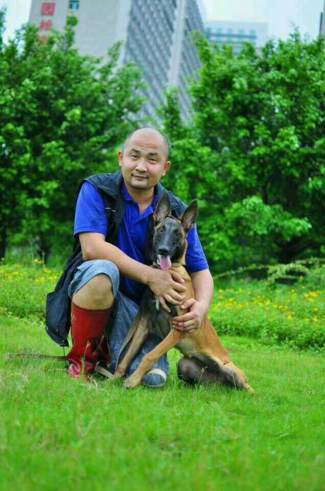 宠物训练|西安和谐宠物|宠物