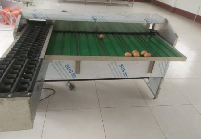 蛋品分级机,诸城昊泰机械,天桥区分级机