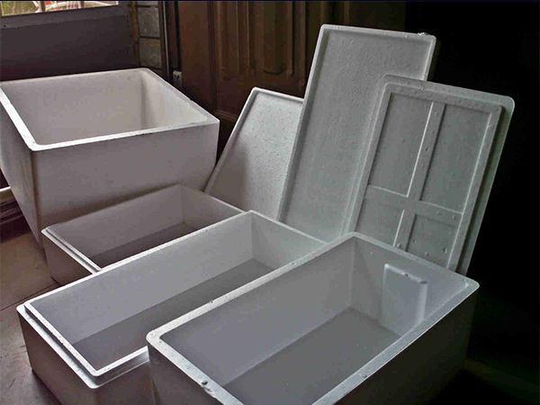 水产泡沫箱、中原泡沫制品(在线咨询)、香菜泡沫箱