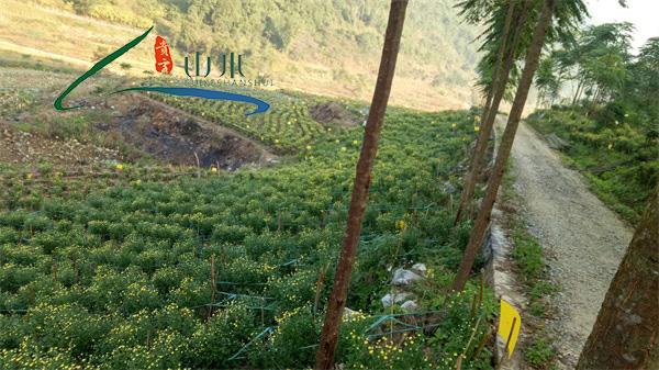 贵州山水贵客(图),农副产品加工公司,农副产品