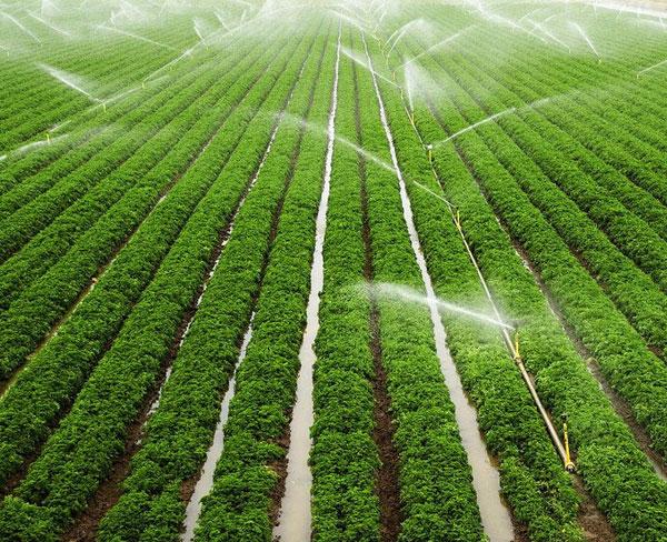 安徽安维(图)、喷灌设备生产厂家、宿州喷灌设备