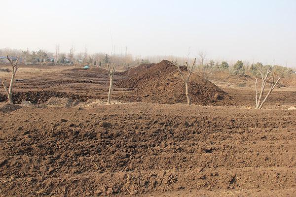日照有机肥料、日照有机肥原料、水溶性有机肥料厂