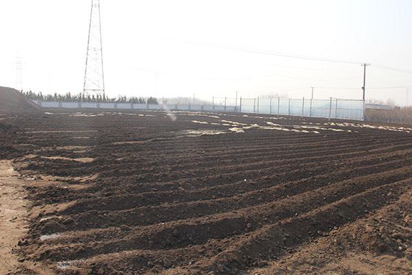 日照茂源、肥料、生物肥料
