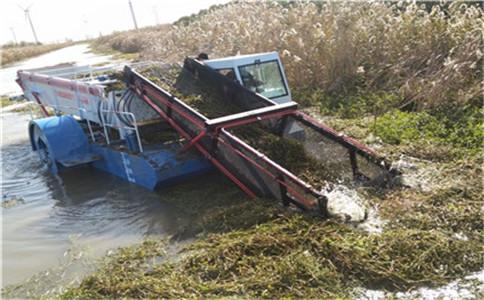 水浮莲打捞清理设备|湖面保洁船|石首清理设备