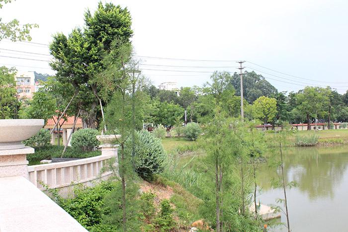 云合建工(图)、农村绿化工程、绿化工程