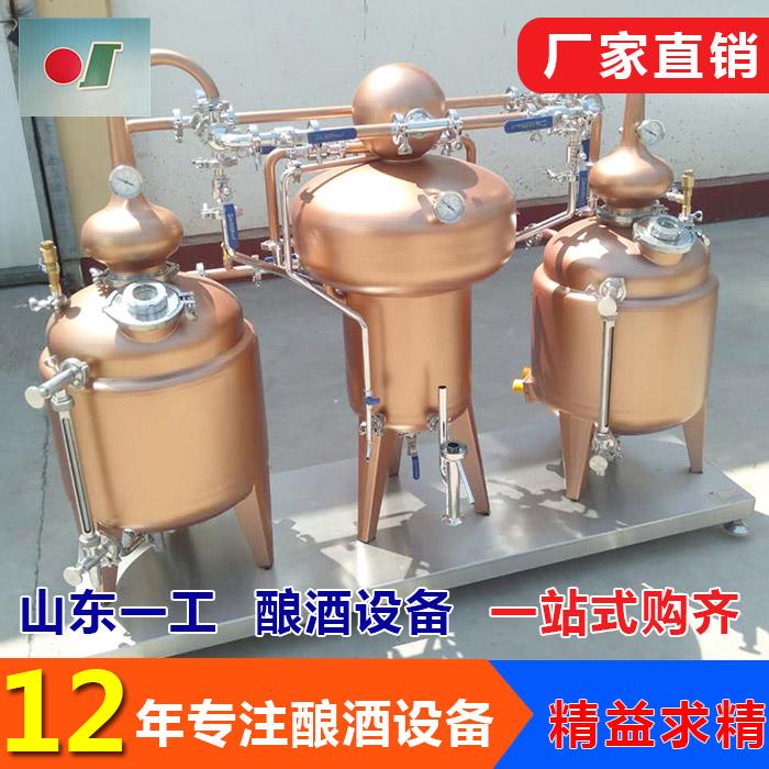 青梅果脯汁去硫设备报价 山东一工酿酒设备 果脯废液去硫培训